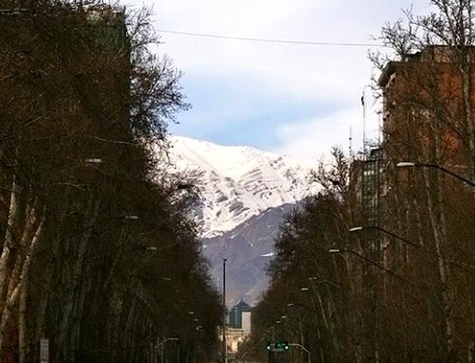 چنارهای هفتاد ساله خیابان پهلوی تهران