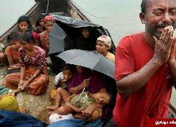 هزاران مسلمان روهینگیا به بنگلادش گریختند