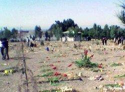 به یاد جان باختگان کشتار سال ۶۷ با سی گل رز