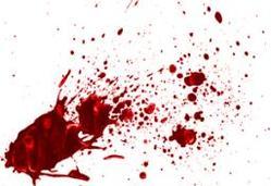 با سرهای بریده، ایران بوی خون گرفته!