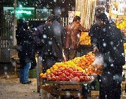زلزله و گرانی کمرشکن در آستانه شب یلدا