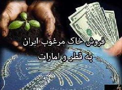 کارشناس: قاچاق خاک ایران؛ فاجعه ای جبران ناپذیر