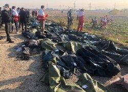 آثار گلوله بر روی بدنه هواپیمای ساقط شده+تصاویر