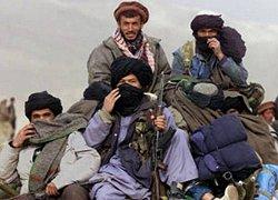 طالبان: اگر خدا بخواهد به زودی امیرالمومنین را می بینید!
