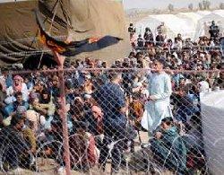مرز ایران؛ روایتی دردناک از ازدحام مهاجران بیپناه افغان